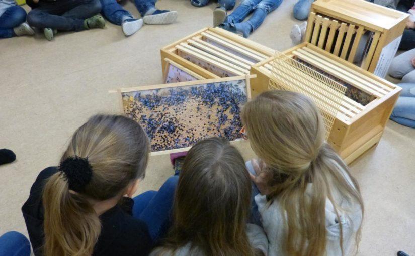Bilderbeute zu Gast an der Grundschule Ainring