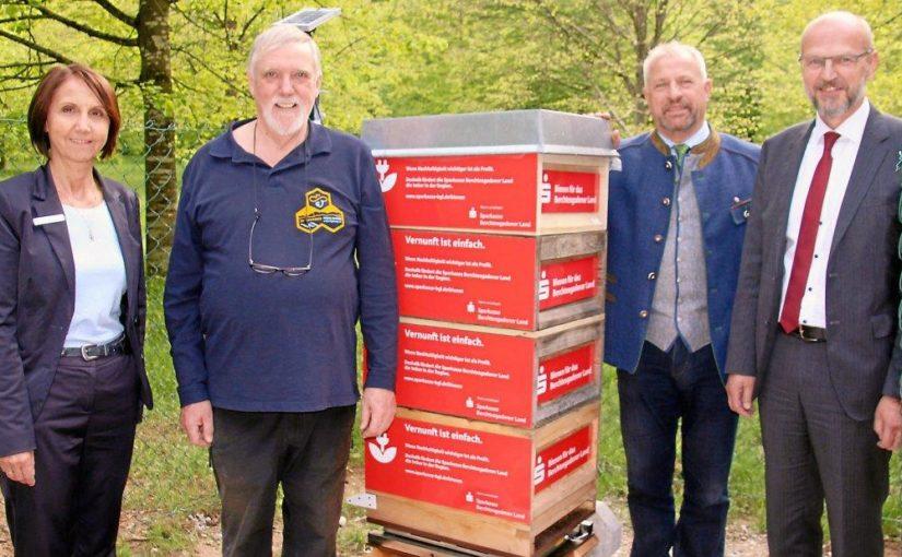 Sparkasse eröffnet drei Bienen-Filialen am Lehrbienenstand